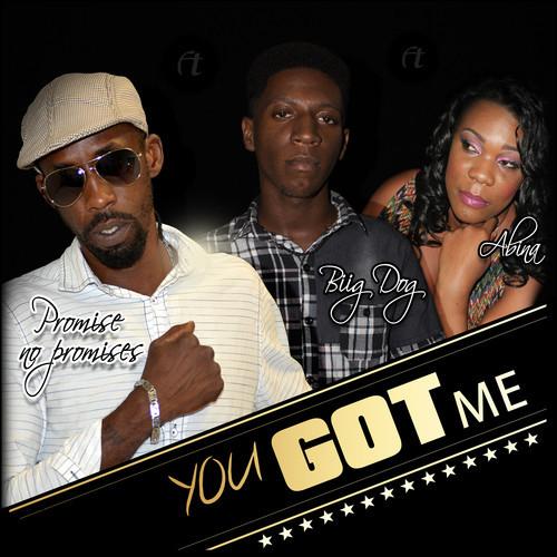 Promise No Promises ft Biig Dog , Abina - You Got Me yardhype